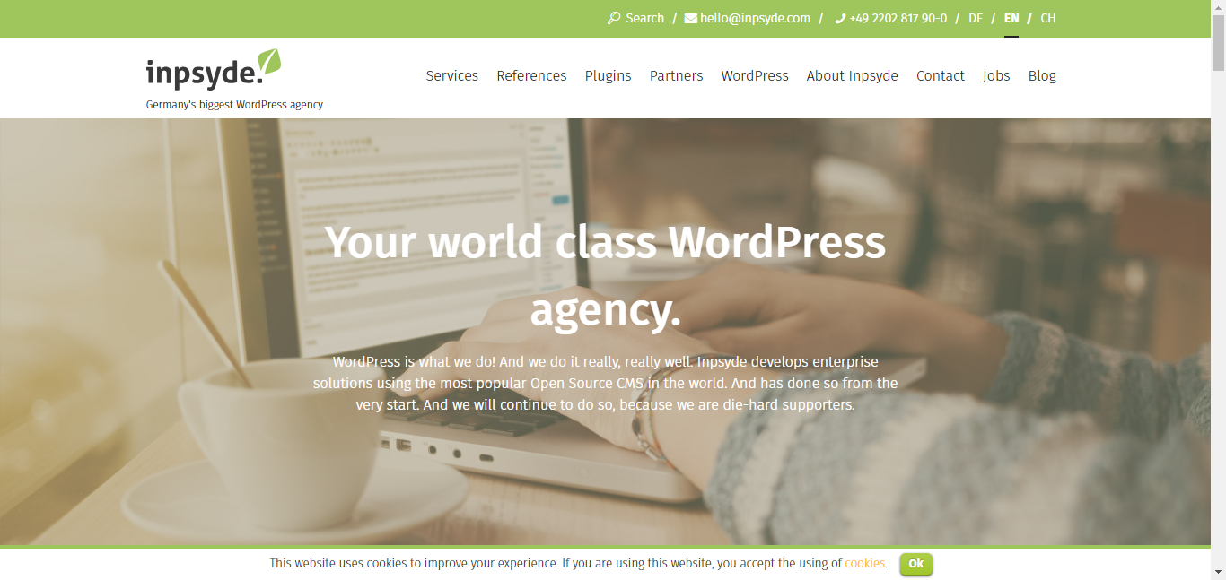 WordPress Multisite Overview - example inpsyde.com