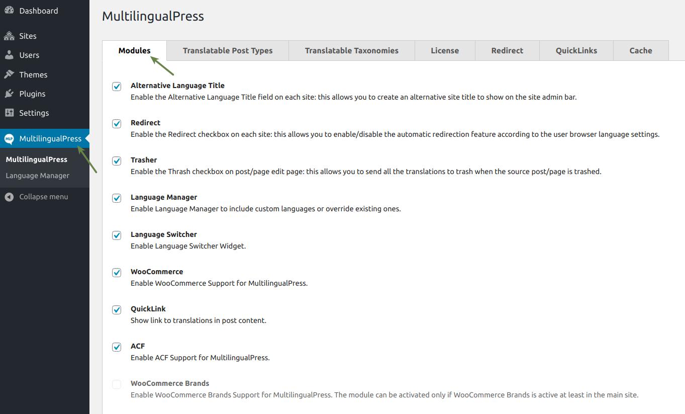 MultilingualPress Modules