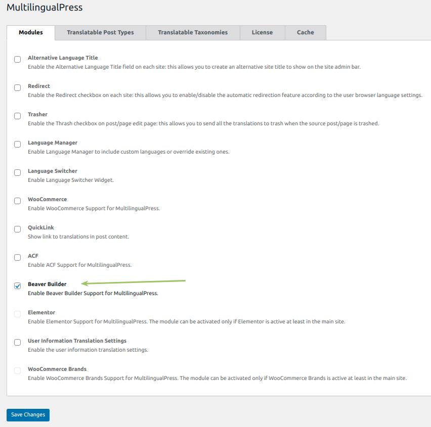 Enable Beaver Builder support module